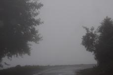1.1447915546.noch-mehr-nebel
