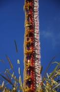 1.1474663113.geschmueckter-bambus