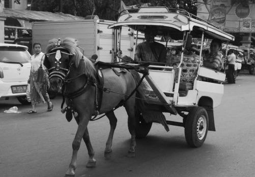 1.1474663113.traditionelle-kutschen-auf-lombok