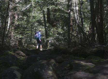1.1480832592.hiking