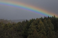 1.1480832592.rainbow