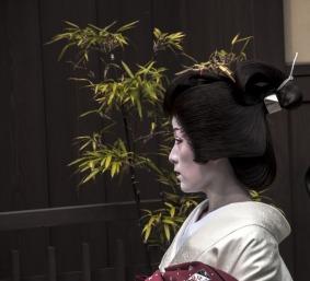 1.1492326859.a-geisha