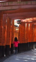 1.1492326859.fushimi-inari-taisha-tempel